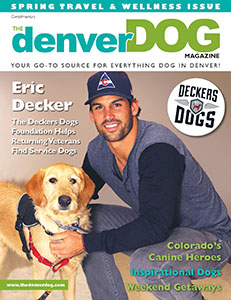 The Denver Dog Spring 2014
