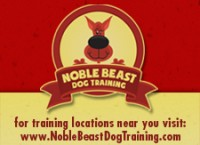 banner_ad_Noble_best