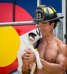 fire rescue dogs