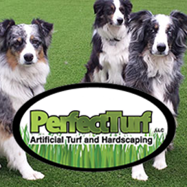 perfect-turf-pets