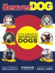 The Denver Dog Fall 2013