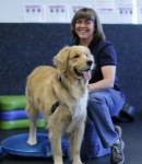 Photo Courtesy Of Canine Rehabilitation and Conditioning Group